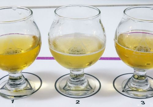 Getting Blind With Crafty: Pale Lagers 2021