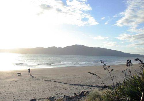 Beer Travel: NZ Tiki Tour III Greater Wellington
